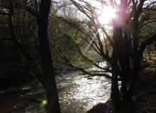 Waterfalls walk (Paul Stacey)